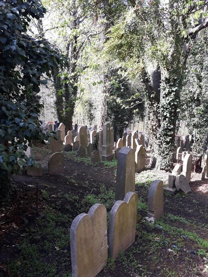 Starý Židovský hřbitov (14. 4. 2018)