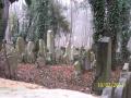 Starý Židovský hřbitov (10. 2. 2013)
