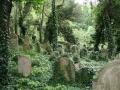 Starý židovský hřbitov (zdroj: mablung.rajce.idnes.cz)