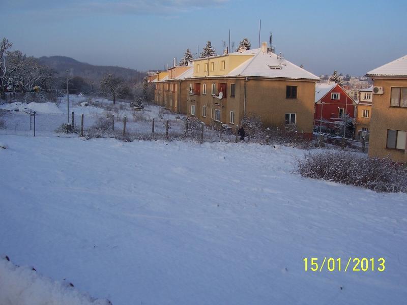 Sníh milosrdně přikrývá vypleněný sad (autor: Drahomír Bárta, 15. 1. 2013)