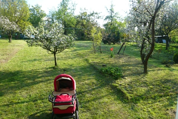 Zahrada byla plná stromů (autor: Lucie Klenecká)