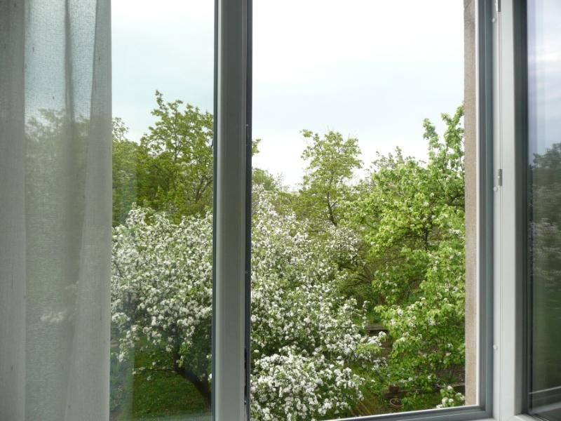 Pohled do rozkvetlé zahrady